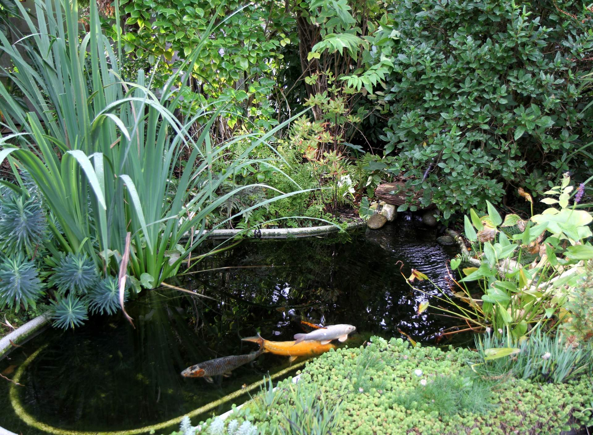 Création de bassins en Gironde et départements proches